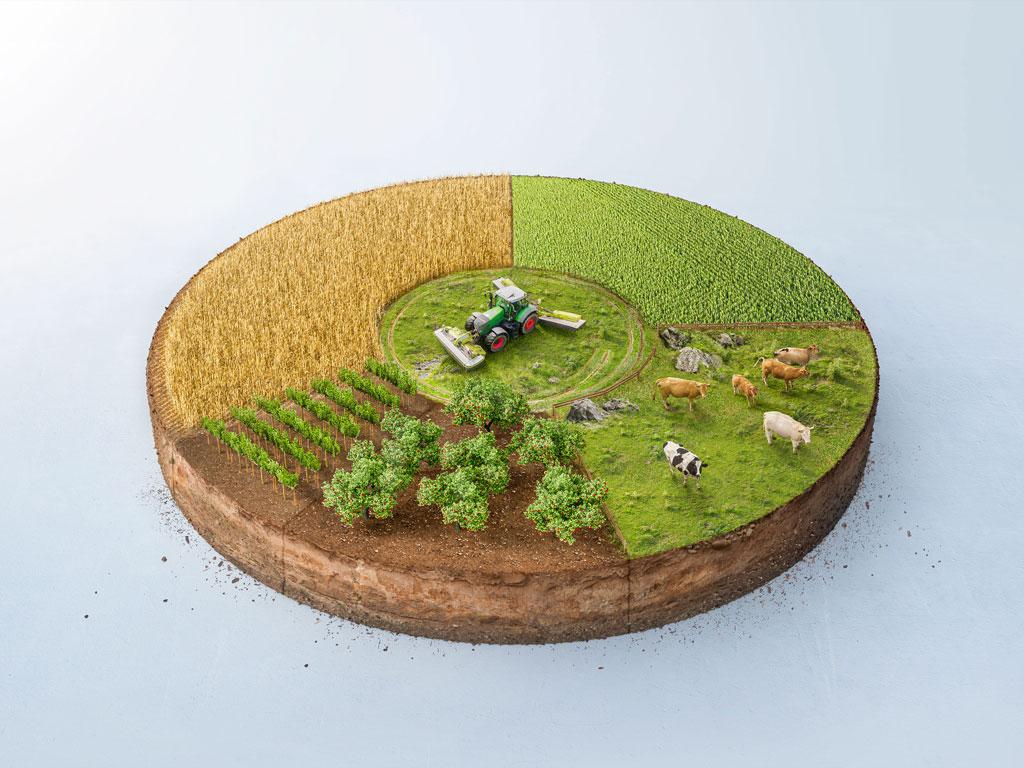 Realistisches Kreisdiagramm echten Fotos und 3D Rendering als Visual. Landwirtschaftliche Kennzahlen und Export Deutschland. Lauktien & Friends
